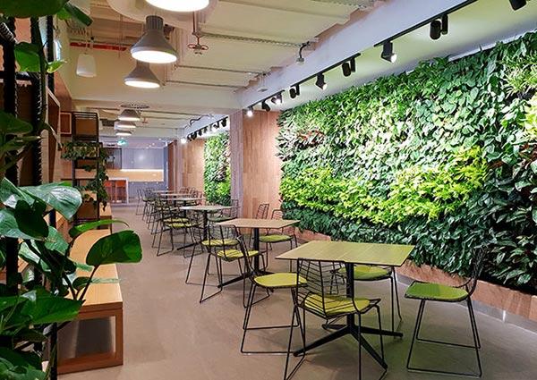 银行等候区植物墙
