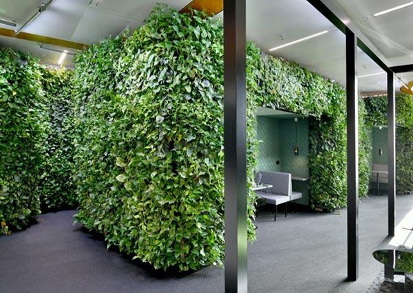 洽谈室植物墙